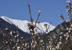 Previsioni per la seconda metà di febbraio: un assaggio di primavera, e poi?
