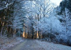 Primo assalto freddo da est, poi rischio neve a quote basse
