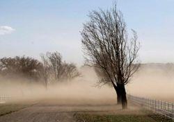 Alerta: intenso Zonda en el NOA y tormentas en el Litoral