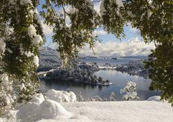 Pronóstico: entre frío y frío, las temperaturas darán una tregua