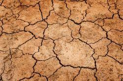 ¿Qué sabemos de ..? El cambio climático