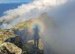 Regalos visuales de la monótona niebla