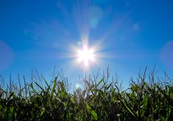 Semana arranca com calor em Portugal
