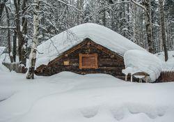 Sibirische Kältepeitsche bringt uns frühwinterliches Wetter!