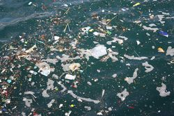 Starbucks decreta fim das palhinhas de plástico nas lojas de todo o mundo
