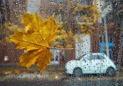 Temporal de chuva e vento forte no primeiro fim de semana de outubro