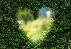 Terra mais verde do que há 20 anos atrás