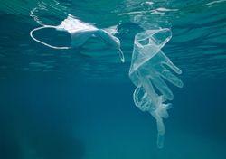 The pandemic's plastic pollution problem