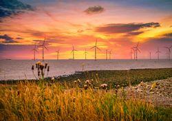 The renewable energy industry is growing fast