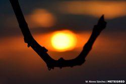 Tiempo esta semana: de la 'DANA' al calor primaveral