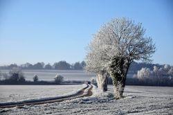 Météo : un risque de neige en plaine pour ce week-end !