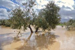 Sigue el riesgo: una DANA podría traer lluvias fuertes al Mediterráneo