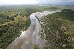 Vazamento de óleo no Rio traz graves danos ambientais e socioeconômicos