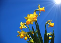 Will warm weather be record-breaking before Easter?