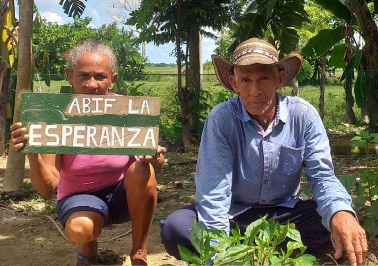 A través de los conocimientos que ya tiene la comunidad rescatan los cultivos propios de la región. Foto: PNUD