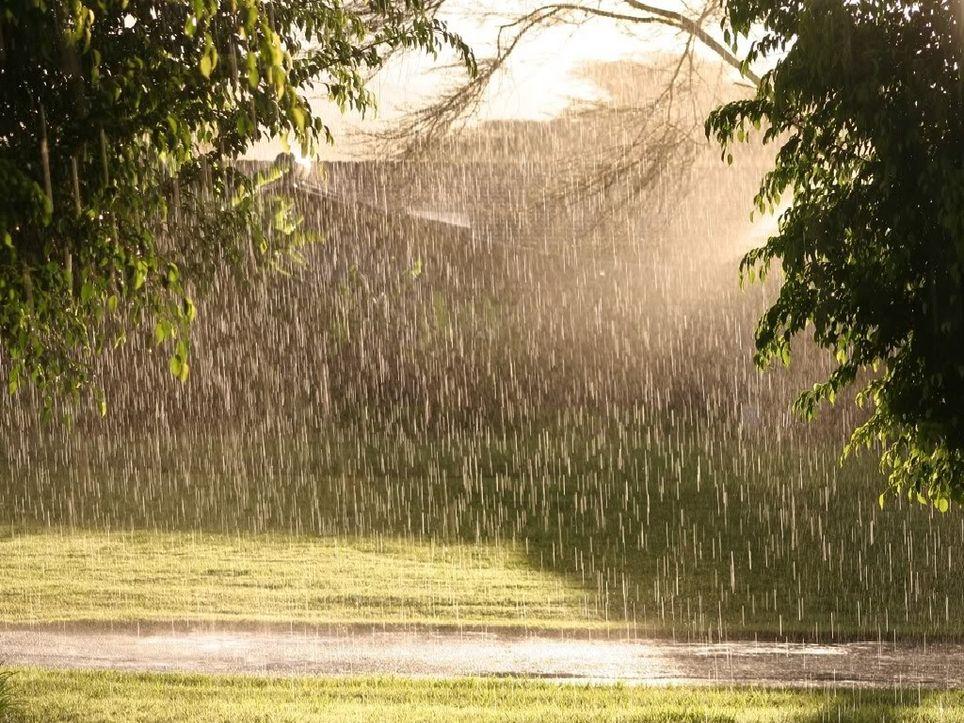 Sol y lluvias