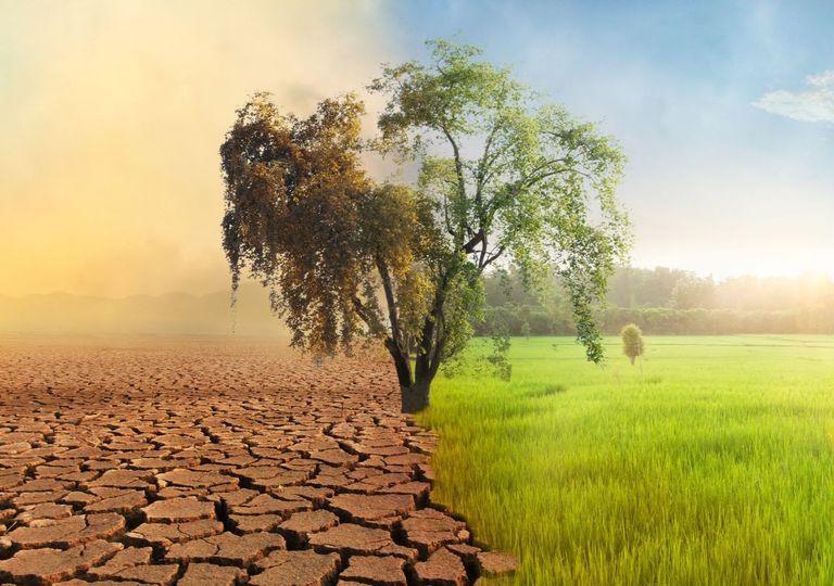 Mudança climática impactará o sistema alimentar mundial.