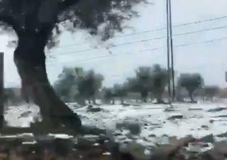 A neve regressa ao Alentejo: não perca as imagens!