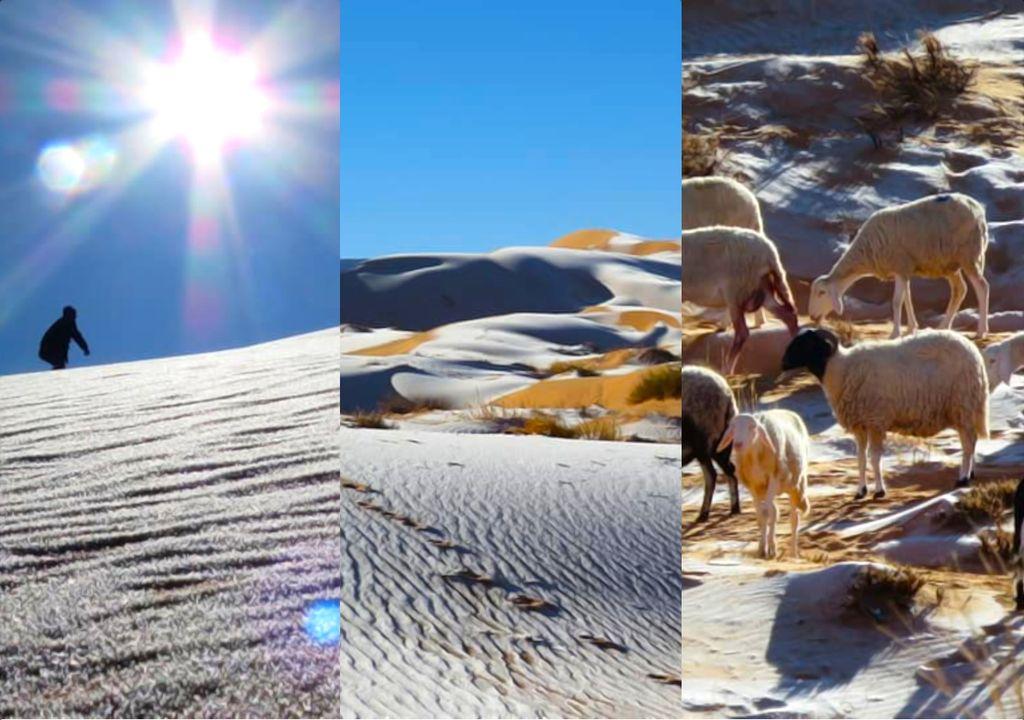 Snow in the Sahara desert.