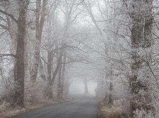 Niebla engelante