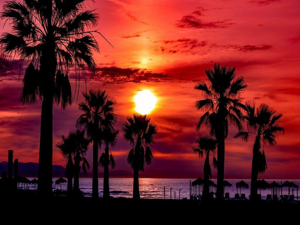 Las noches con temperaturas mínimas iguales o superiores a 20 ºC se las llama noche tropical