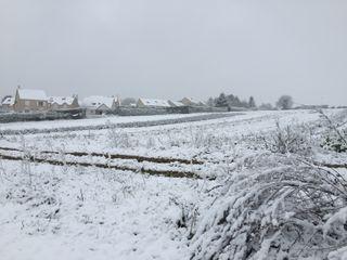 Nouvel épisode de neige en plaine ce mardi : les régions concernées