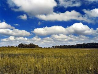 Nubes primaverales