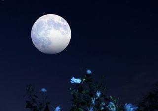Un événement à ne pas manquer, la super lune aux fraises est là !
