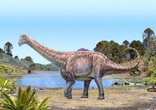 Nueva especie de dinosaurio identificada al norte de Chile