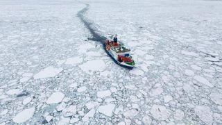 Nuevos datos sobre el adelgazamiento del hielo marino