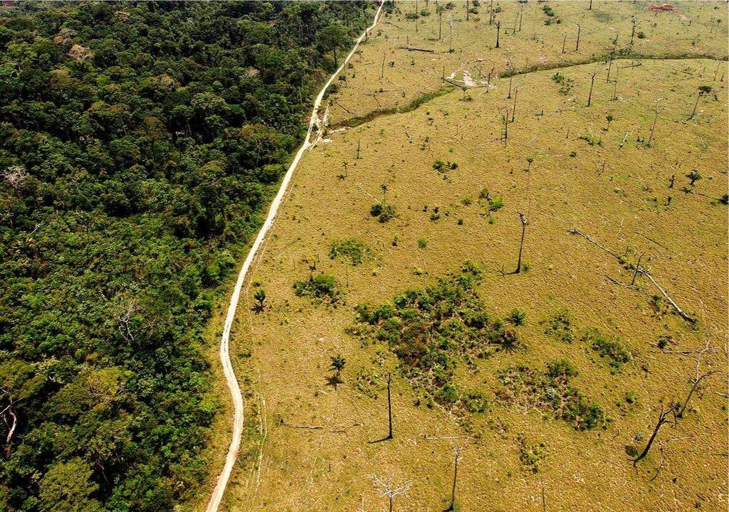 Aumento da temperatura global pode liberar mais carbono do solo.