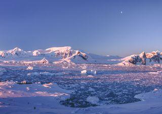 La Antártica vivió uno de sus inviernos más crudos este 2021