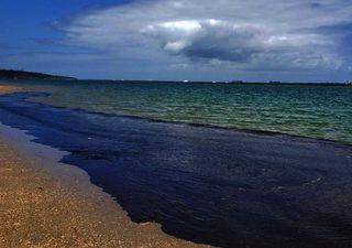 O que as correntes marinhas nos contam sobre o óleo no litoral?
