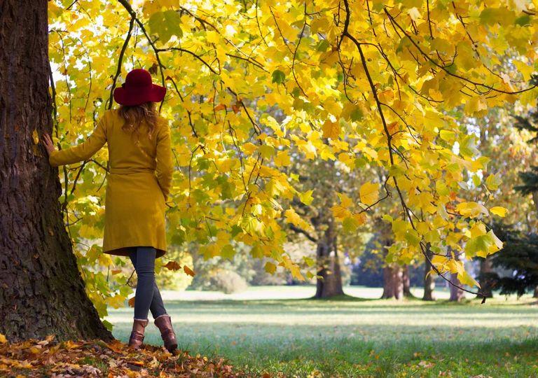 outono; frio; mulher