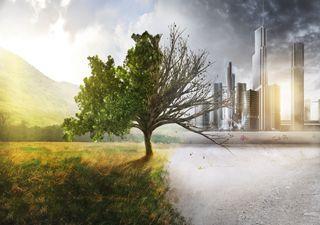 Objetos produzidos pelo homem podem superar a biomassa da Terra