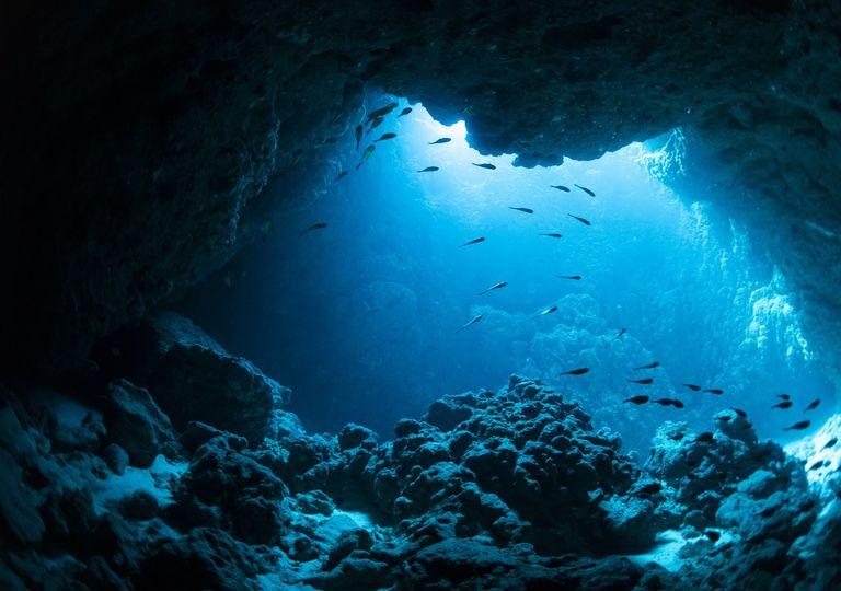 Para construir un mundo más deseable. Necesitamos comprender mejor y respetar mejor el océano