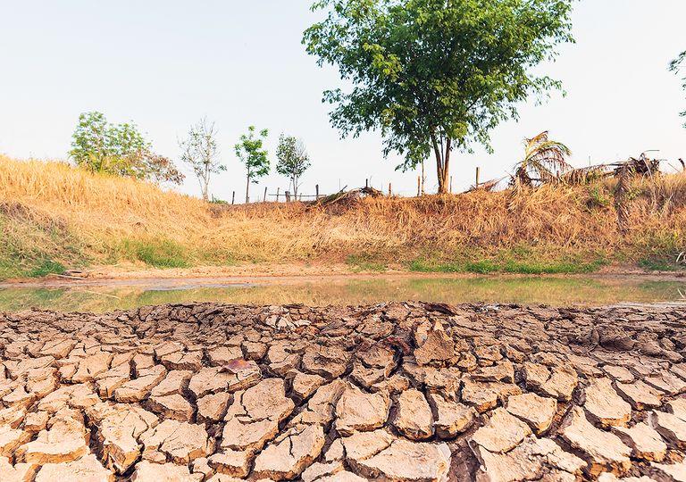 La sequía continúa con nosotros y ya hemos entrado en el período más húmedo del año.
