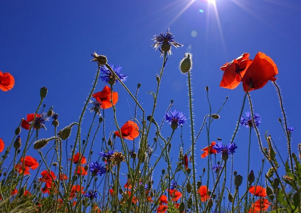 sole-caldo-primavera