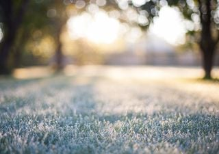 Ola de frío eleva contaminación ambiental a niveles críticos en el sur