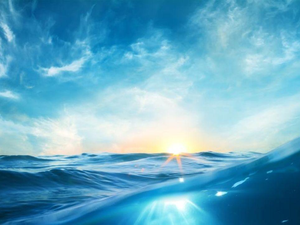 Olas de calor marinas