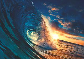 Le ondate di calore marine sono sempre più frequenti: cosa sono?