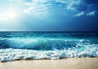 Algunas olas, antes de romper frente a ti, navegan miles de kilómetros