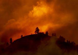 Onda de calor seria impossível sem o efeito do aquecimento global