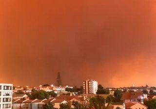 Onemi llama a evacuar sectores de Quilpué por incendio forestal