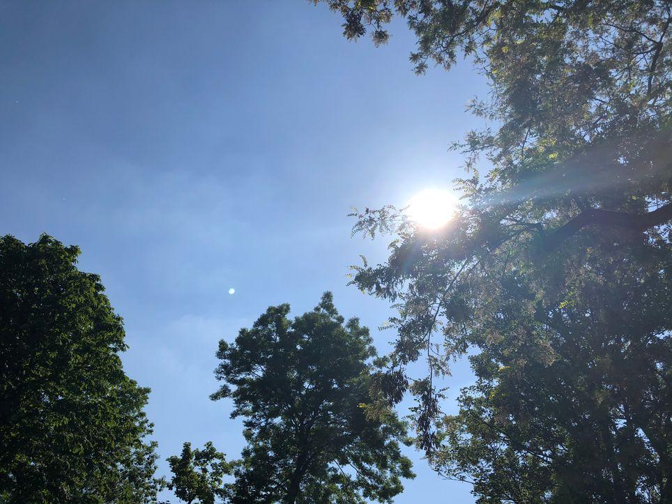 Orages et chaleur cette semaine