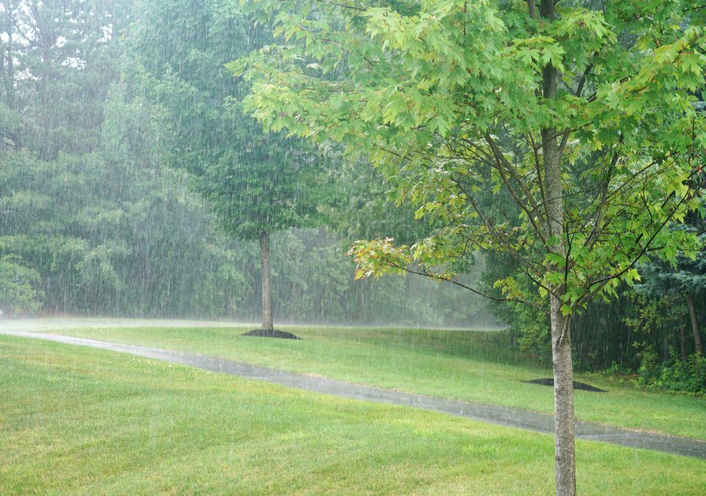 chuva; precipitação em estado líquido