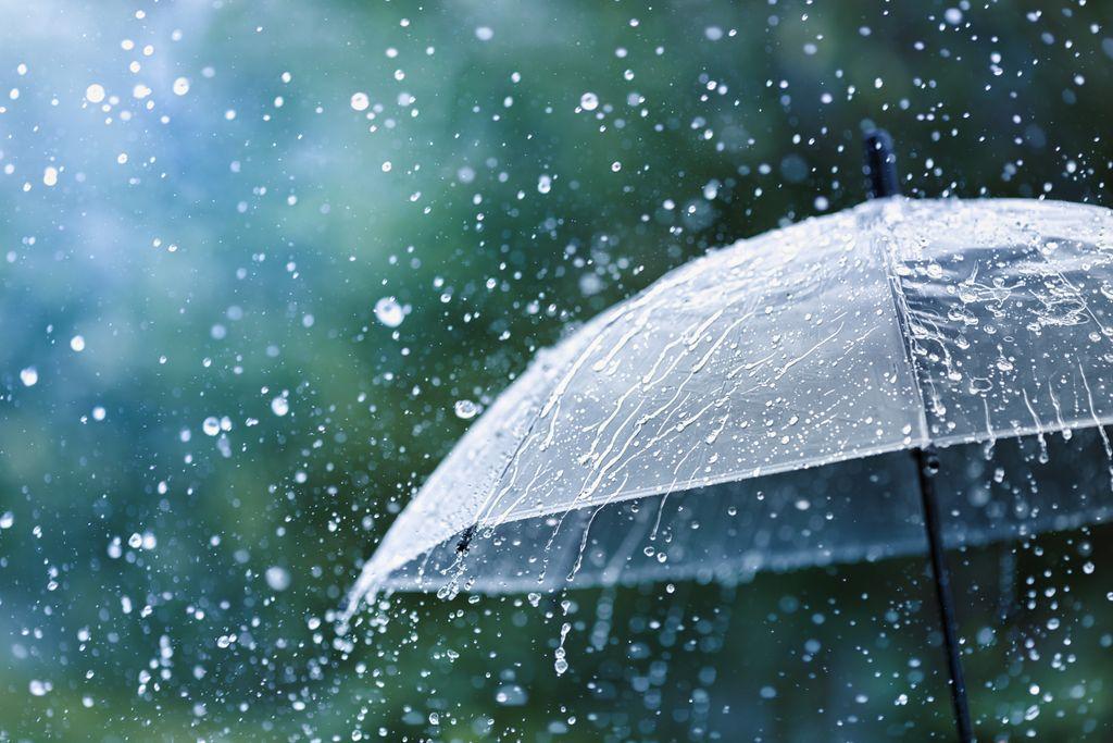 chuva; guarda-chuva