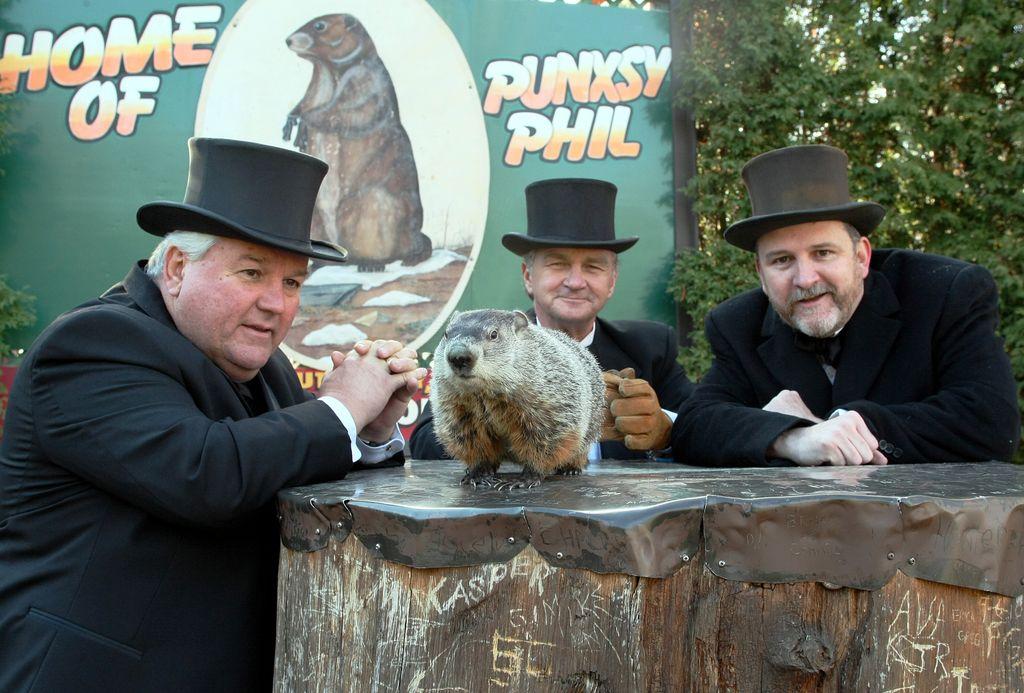 Phil la marmota