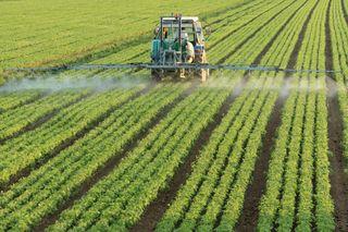 Plaguicidas: efectos dañinos en el medio ambiente y la salud