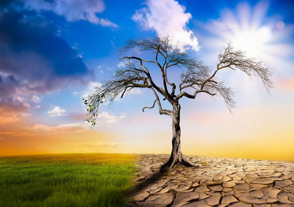 Aumento de sequía provocado por el cambio climático